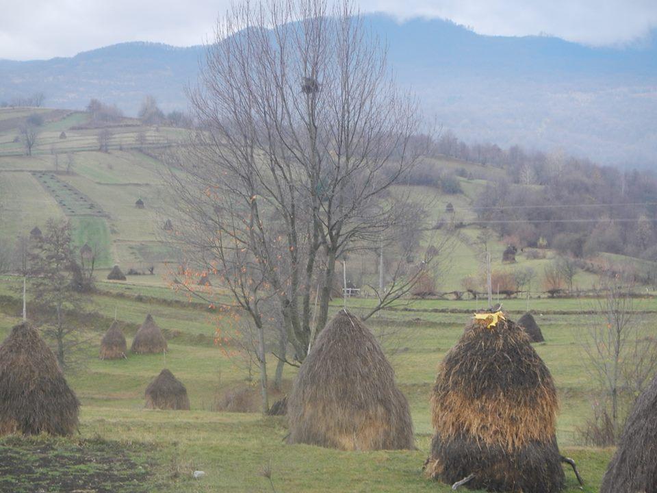 Maramures- toamna- foto iexplorero ixr