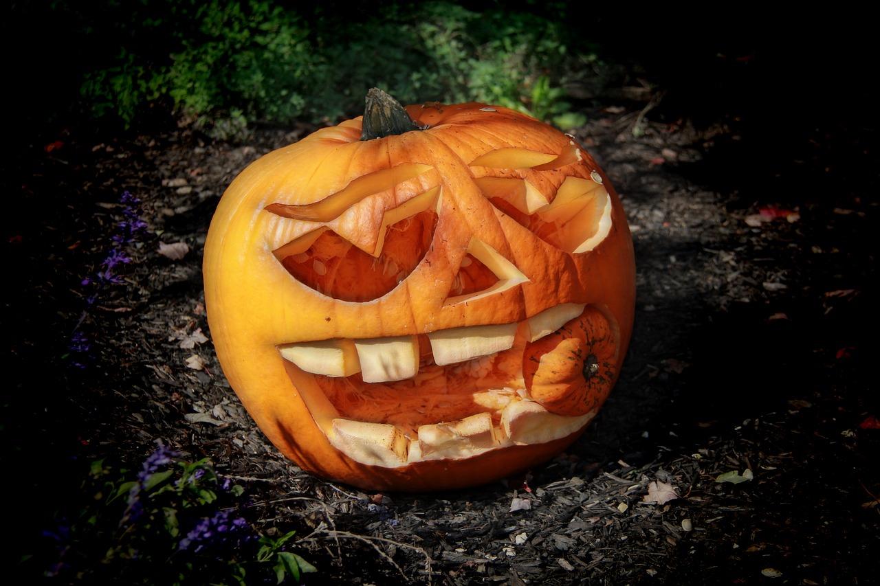 halloween vs sf Andrei