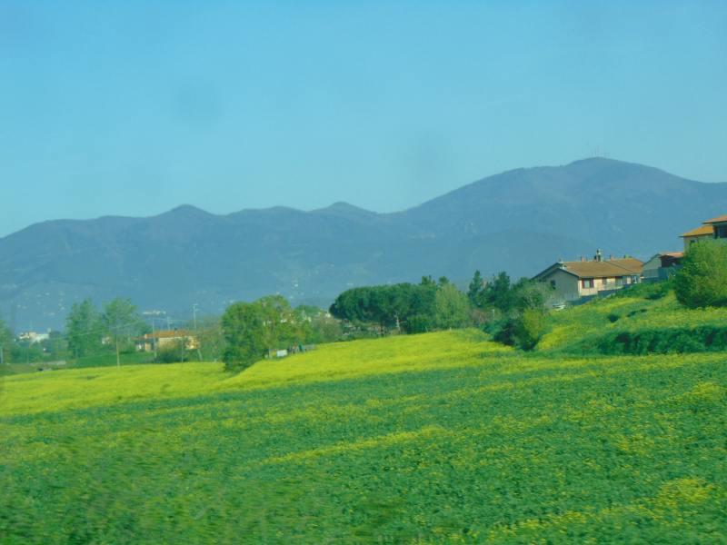 peisaj Toscan din tren